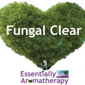 Fungal Clear Essential Oil Blend