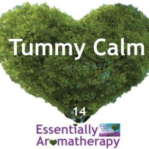 Tummy Calm Essential Oil Blend
